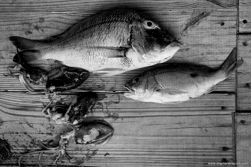 Dinner - fresh seafood