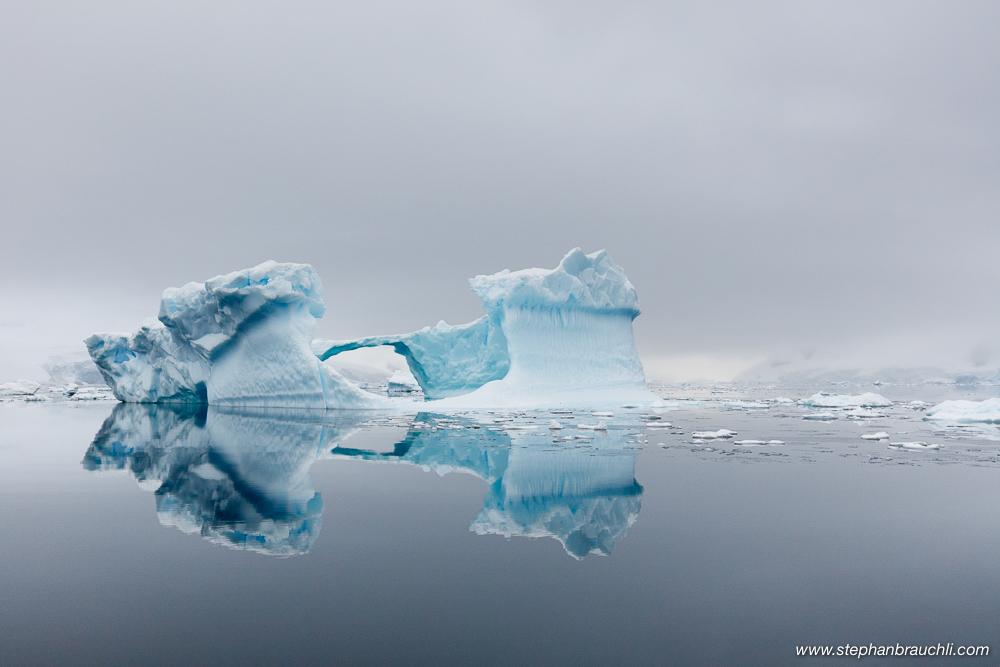 Icebergs in Paradise Bay