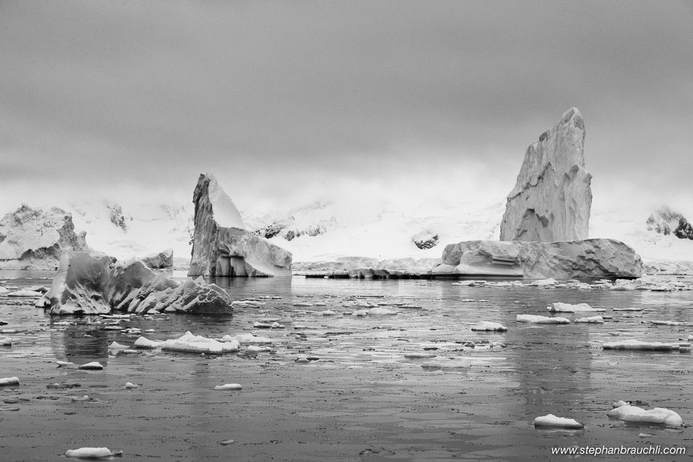 Icebergs in Paradise Bay